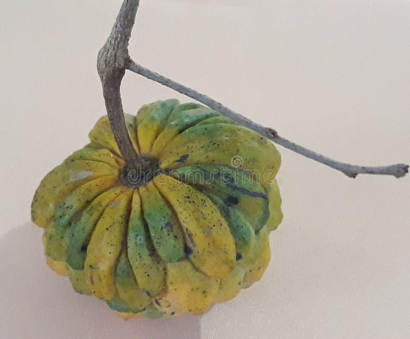 frukt som är av greven fotografering för bildbyråer