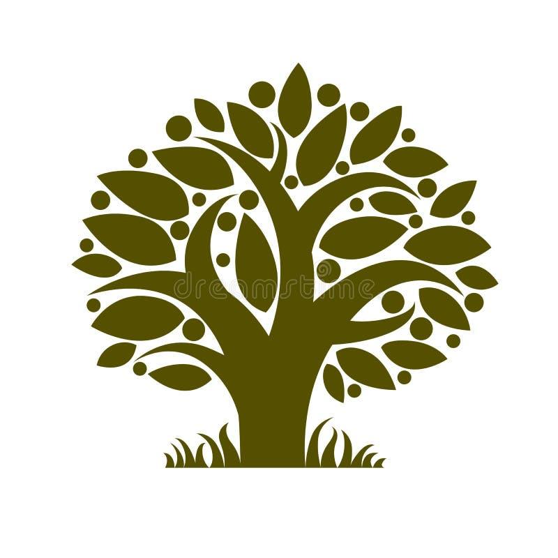 Frukt- träd med mogna äpplen som isoleras på vit Organiskt och eco vektor illustrationer