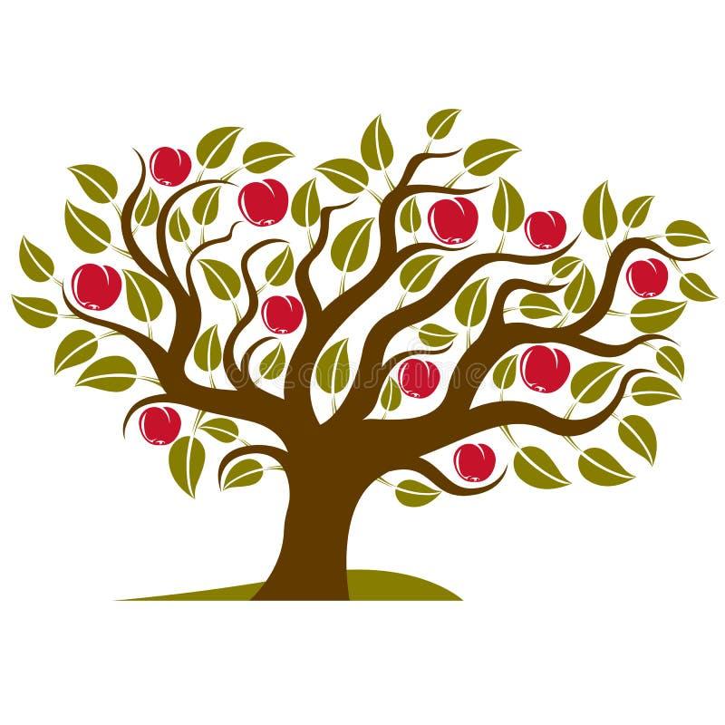 Frukt- träd med mogna äpplen som isoleras på vit Organiskt och eco stock illustrationer