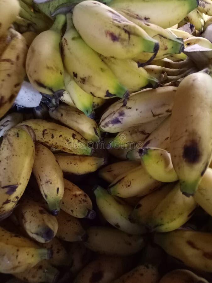 fruktbanan royaltyfri bild