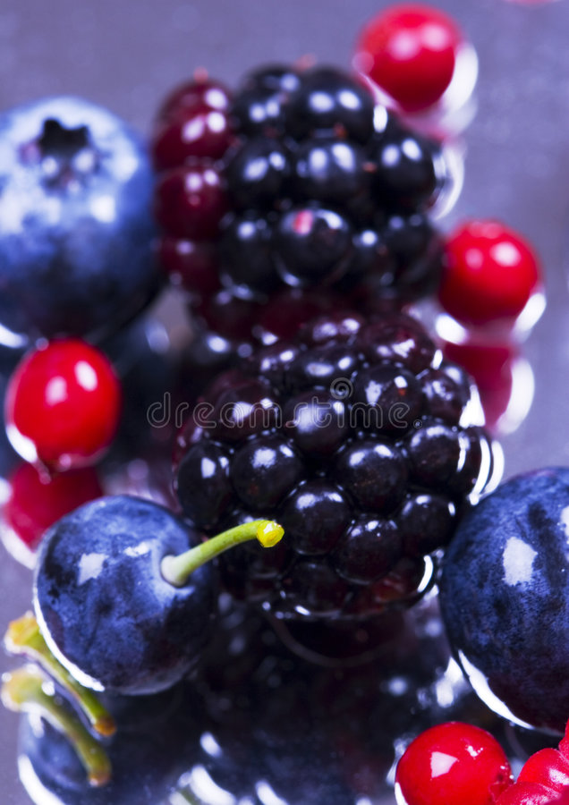 fruktbar mix arkivbild
