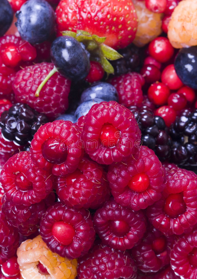 fruktbar mix arkivfoton