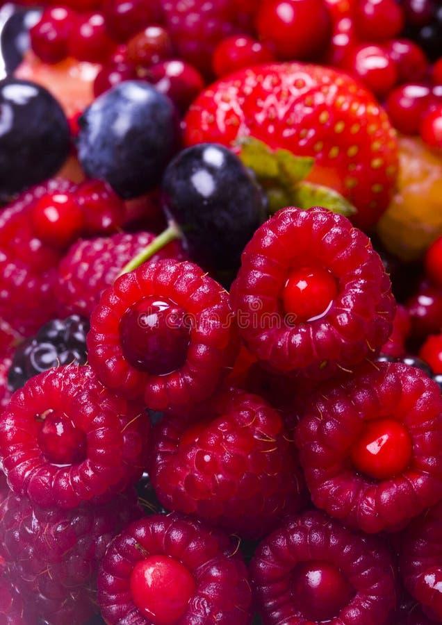 fruktbar mix arkivfoto