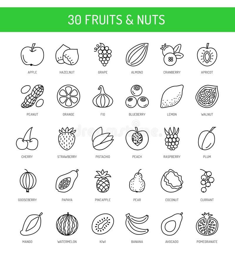 Frukter, bär & muttrar Strikt vegetarian- & vegetarianmat äta som är sunt stock illustrationer