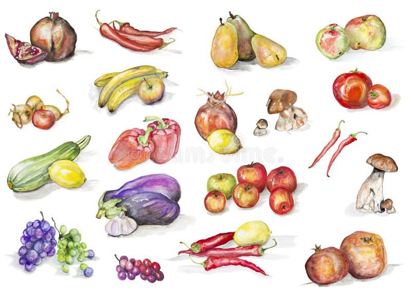 Fastställda vattenfärgfrukter och grönsaker arkivfoto