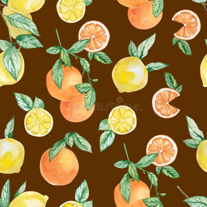 Frukter för vattenfärgsommarsamling förgrena sig, citron-, apelsin- och skivauppsättningen Handen målade frukt på filial med skiv royaltyfri illustrationer