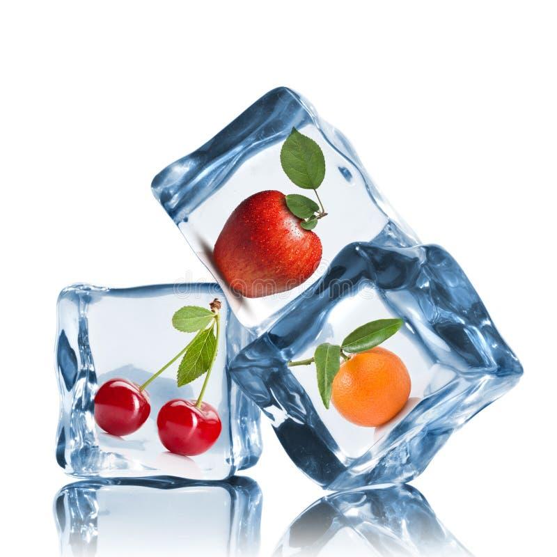 Frukter i iskuber på viten royaltyfri bild