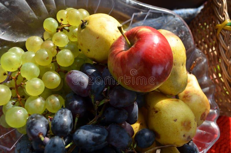 Frukter i korgen royaltyfria foton