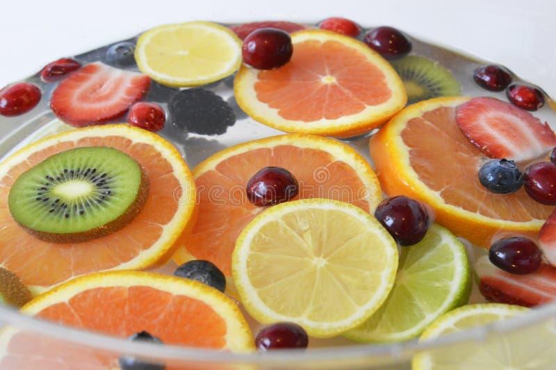 Frukter i vattnet arkivbild