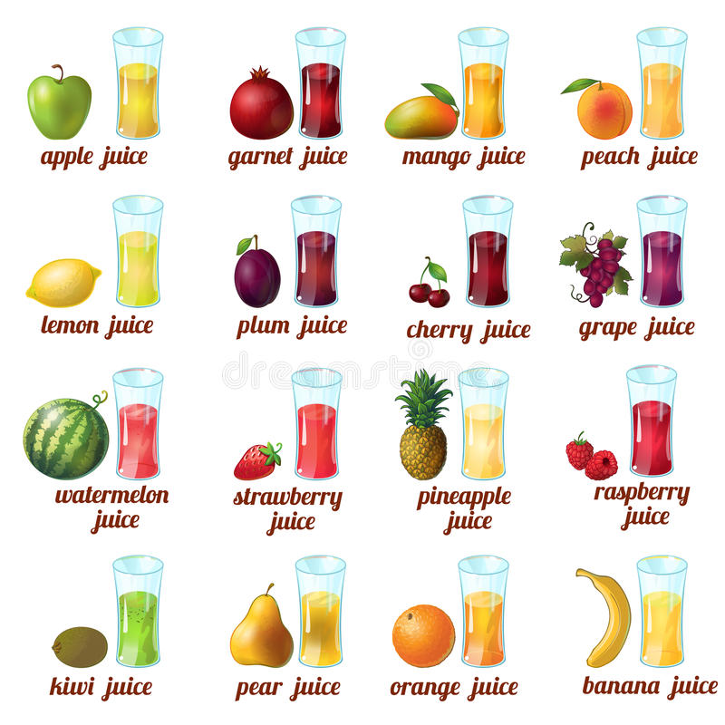 Frukter Juice Icon Set stock illustrationer