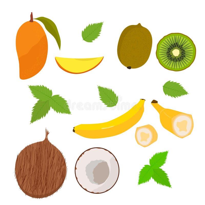 frukter mango Kokos banan Kivi Garden vektor stock illustrationer