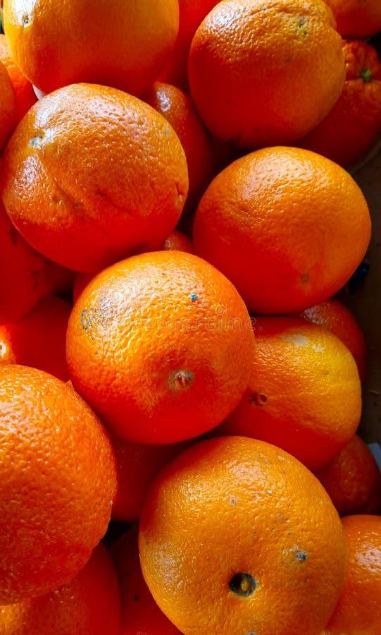 Frukter massor av nya apelsiner i lagerslutet upp royaltyfri fotografi