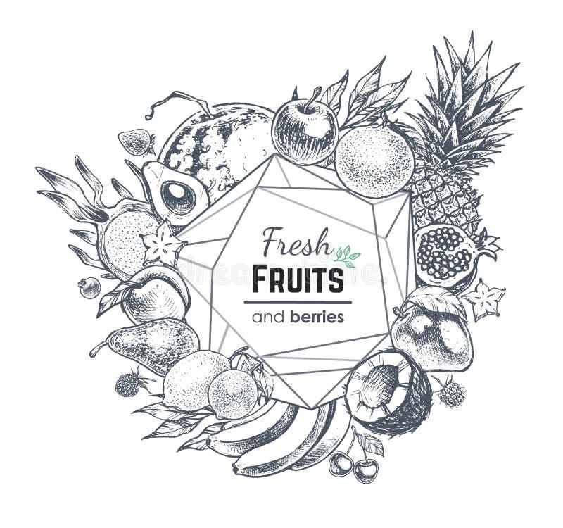 Frukter och bär räcker det utdragna banret den extra illustratören för ramen för Adobeeps-formatet inkluderar vektorn royaltyfri illustrationer