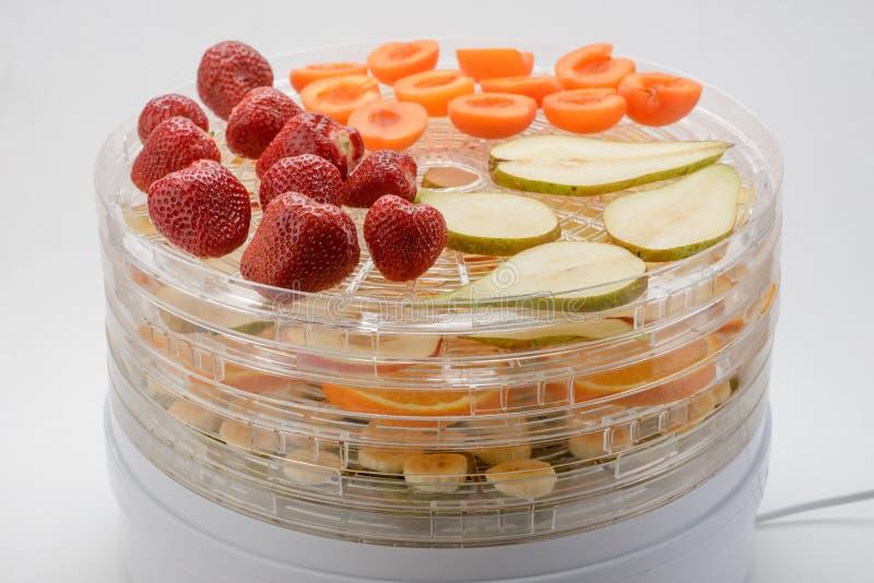 Frukter som packas i en tork royaltyfri fotografi