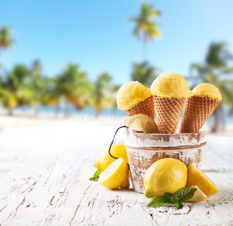 Fruktglass royaltyfri fotografi