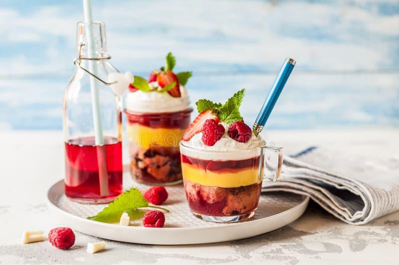 Fruktkaka, gelé och Berry Individual Trifles royaltyfria foton
