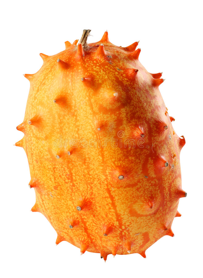 fruktkiwiano royaltyfria bilder