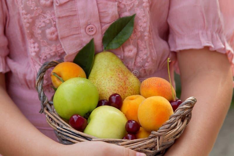 Fruktkorg i händerna av flickan arkivfoto