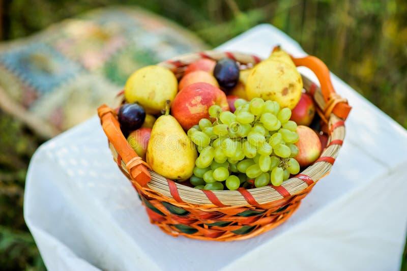 fruktkorg på en vit fotografering för bildbyråer