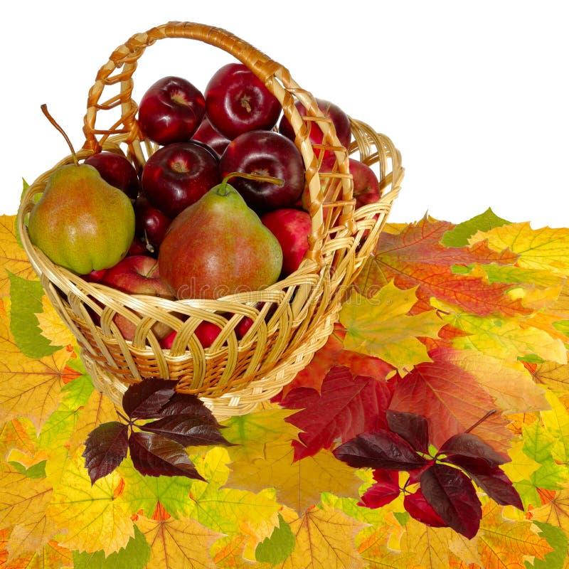 Fruktkorg på leaves arkivfoto