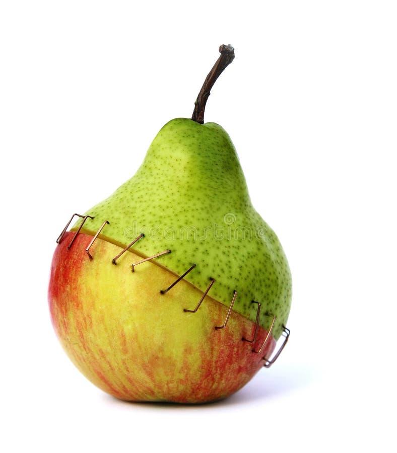fruktmix tackered tillsammans fotografering för bildbyråer