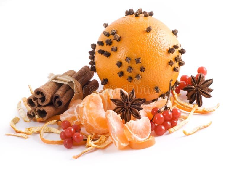 fruktorangespicery arkivbild