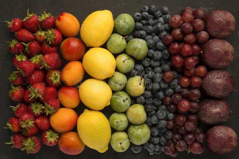 Fruktregnbåge royaltyfri foto