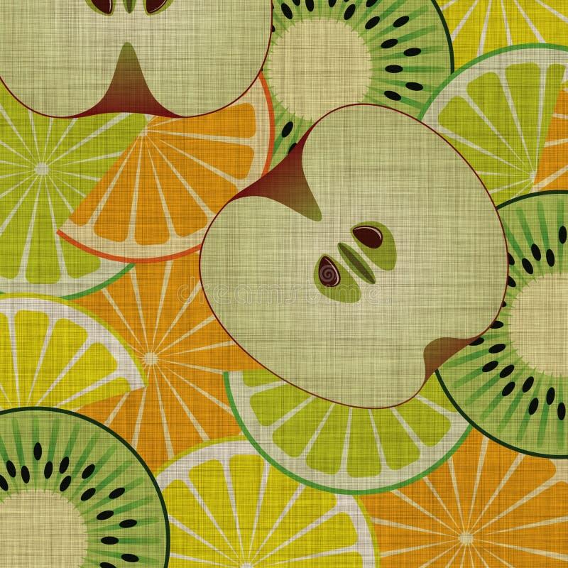 fruktskivor royaltyfri illustrationer