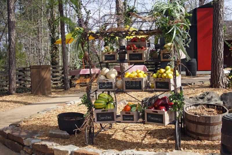 Fruktställning royaltyfri fotografi