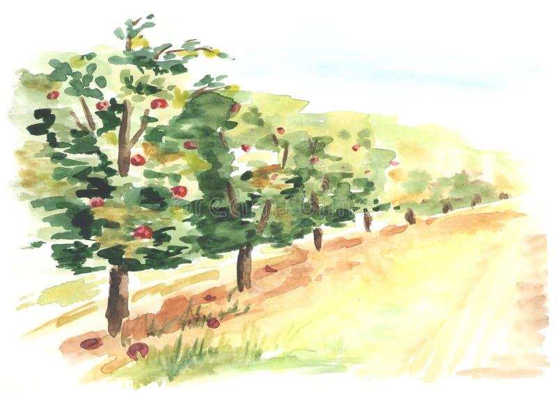 Fruktträdgårdlandskap i perspektiv Hand dragen vattenfärgbakgrund royaltyfri illustrationer