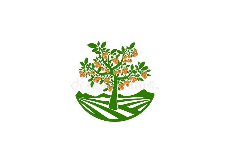 Fruktträdgårdlogoen, frukter arbeta i trädgården symbolet, trädsymbolen, persimonbegreppsdesign stock illustrationer