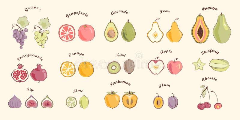 Fruktuppsättning i varma färger royaltyfri fotografi