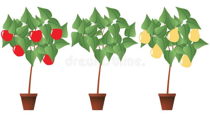 fruktväxt royaltyfri illustrationer