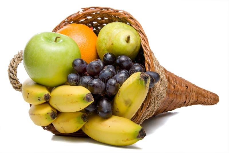 Fruktymnighetshorn royaltyfri fotografi