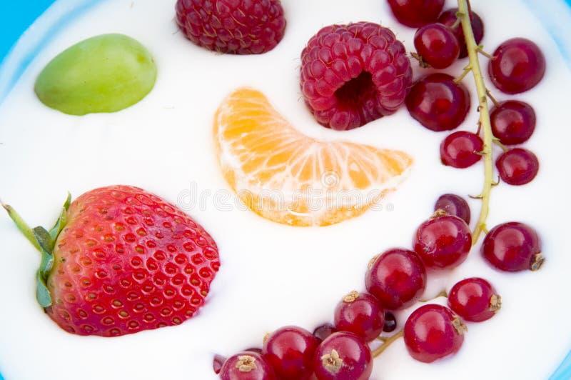fruktyoghurt arkivbilder