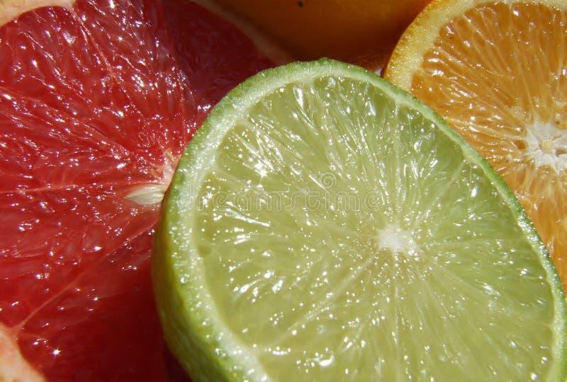 Fruta imagen de archivo libre de regalías