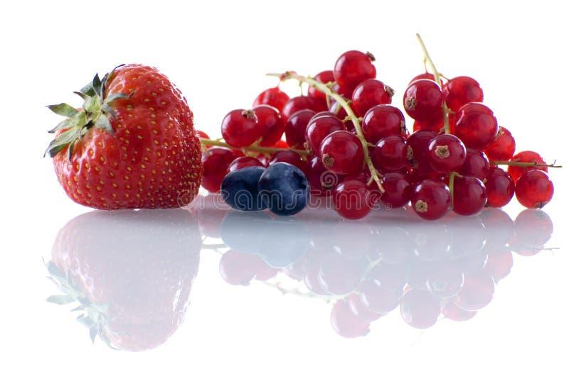 Fruta imagem de stock