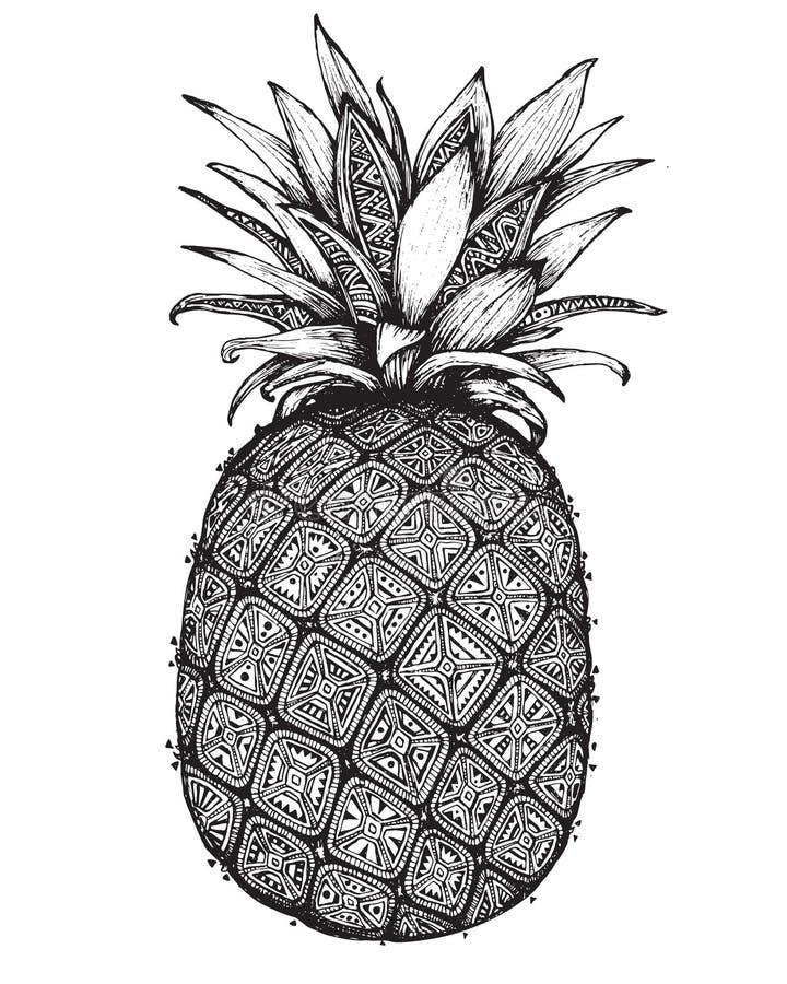 Fruta adornada gráfica dibujada mano de la piña stock de ilustración