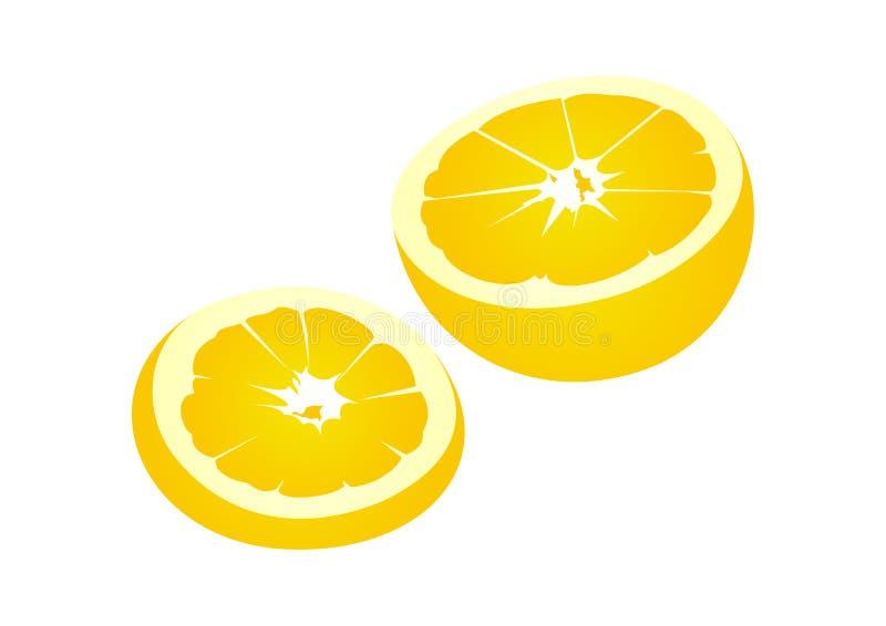 Fruta alaranjada ilustração do vetor