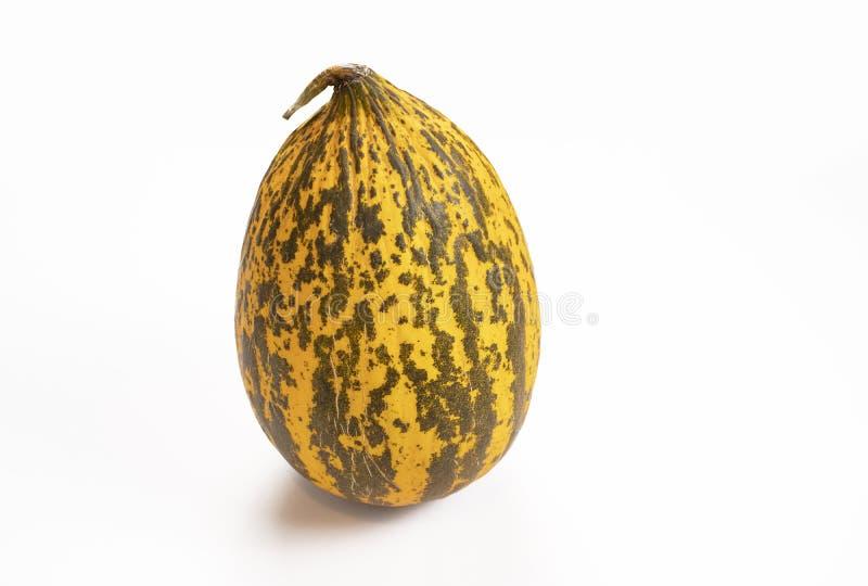 Fruta amarilla del melón, fondo blanco aislado imagenes de archivo