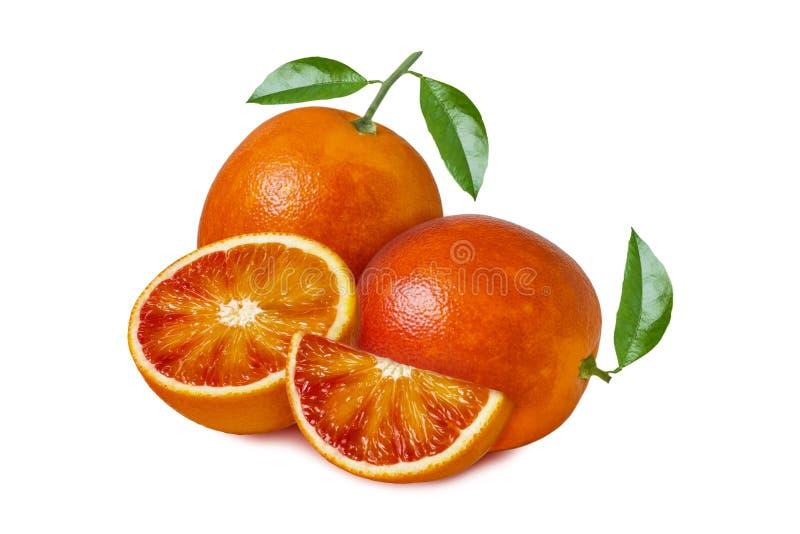 Fruta anaranjada aislada Naranja de sangre roja con las hojas y las rebanadas aisladas en el fondo blanco foto de archivo libre de regalías