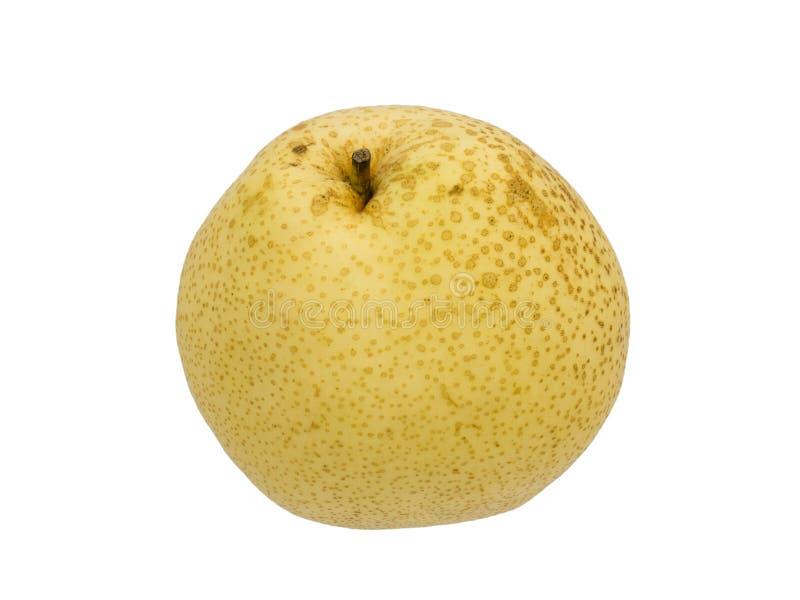 Fruta asiática de la pera aislada fotos de archivo libres de regalías