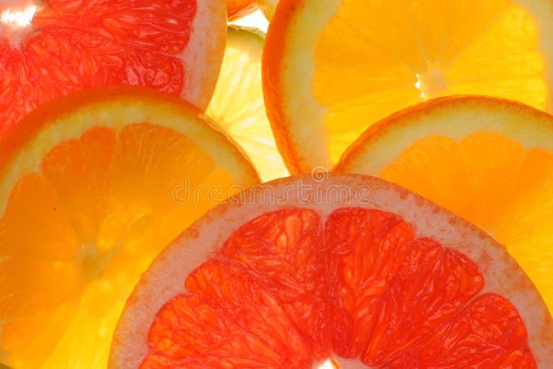 Fruta cítrica foto de archivo