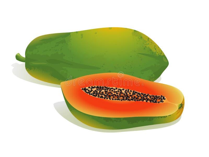 Fruta da papaia ilustração stock