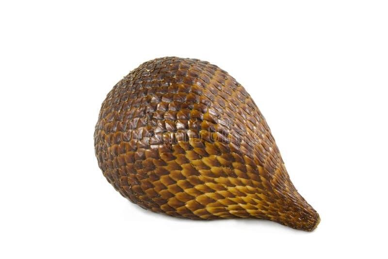 Fruta da serpente fotografia de stock