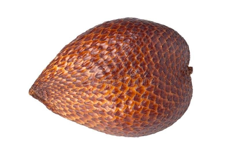 Fruta da serpente fotos de stock royalty free