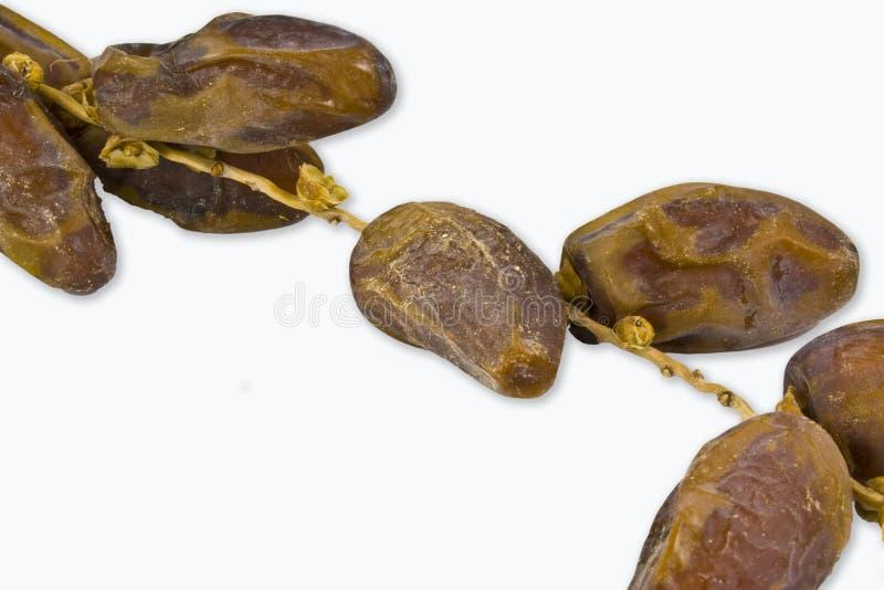 Fruta das tâmaras imagem de stock