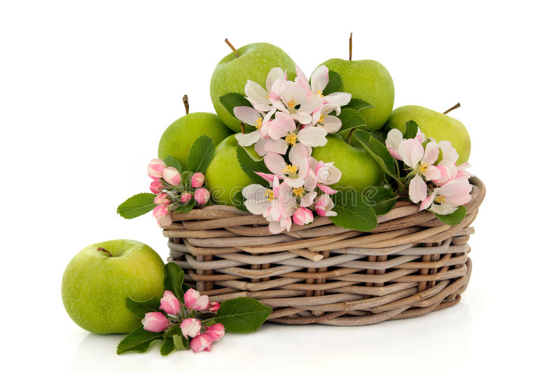 Fruta de Apple e flor da flor imagens de stock