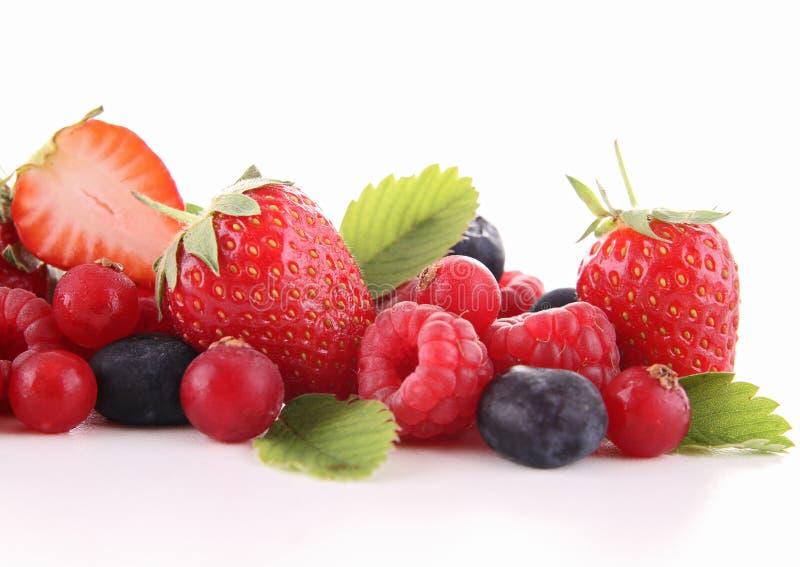Fruta de bagas foto de stock royalty free