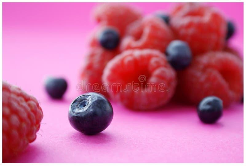 Fruta de Forrest imagenes de archivo